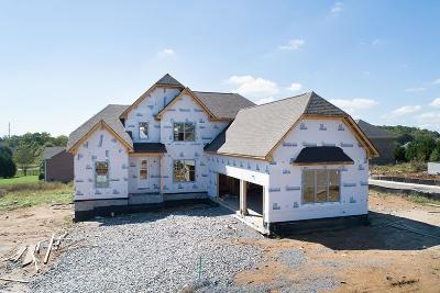 Hendersonville Single Family Home For Sale: 101 Whistler Way Lot 222