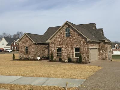Gallatin Single Family Home For Sale: 151 Spencer Springs Dr