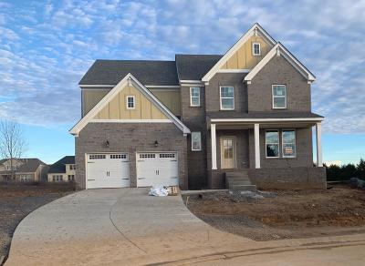 Mount Juliet Single Family Home For Sale: 3063 Elliott Drive #84
