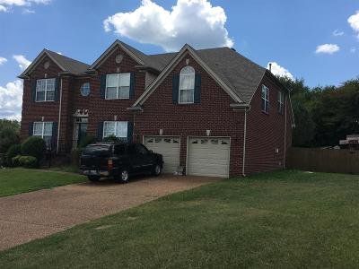 Nolensville Single Family Home For Sale: 1001 McConnell Dr