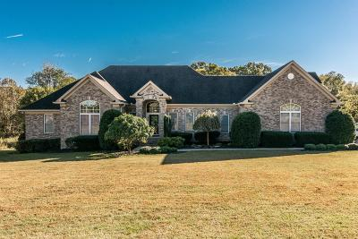 Hendersonville Single Family Home For Sale: 301 Hunters Lane