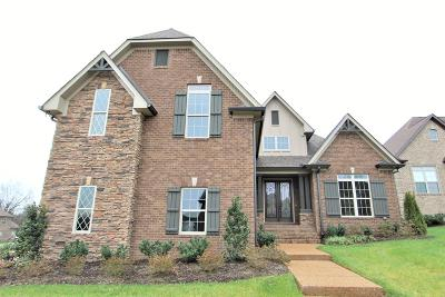 Mount Juliet Single Family Home For Sale: 3036 Nichols Vale Lane #307