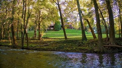 Nashville Single Family Home For Sale: 810 Blackberry Hill