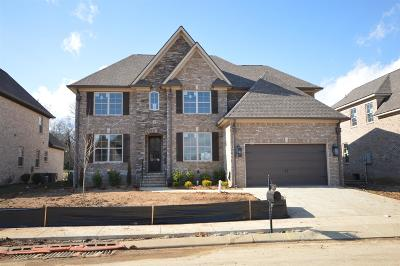 Spring Hill Single Family Home For Sale: 3029 Elkhorn Place (21)