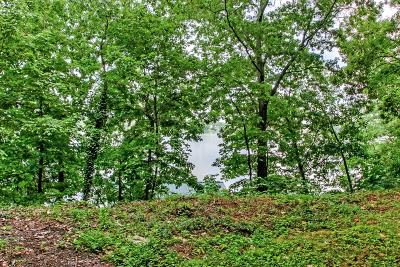 Mount Juliet Residential Lots & Land For Sale: 787 Lakeview Cir Lot 22 & 23