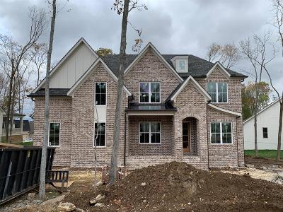 Nolensville Single Family Home For Sale: 428 Oldenburg Rd *lot 2206*