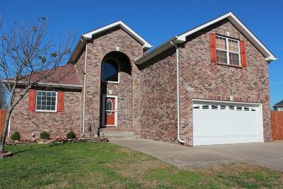 Single Family Home For Sale: 3448 Quicksilver Ln