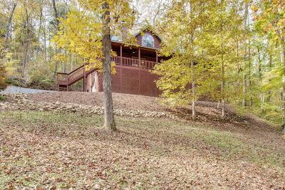 Smithville Single Family Home For Sale: 393 Lakeside Pl