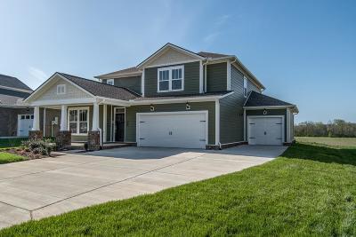 Hendersonville Single Family Home For Sale: 551 Nottingham Avenue