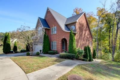 Clarksville Single Family Home For Sale: 536 Summit View Cir
