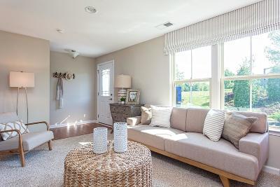 Franklin Single Family Home For Sale: 1013 Belamy Lane (543b)