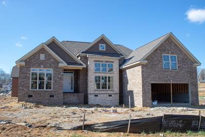 Spring Hill Single Family Home For Sale: 6030 Spade Dr. Lot 255