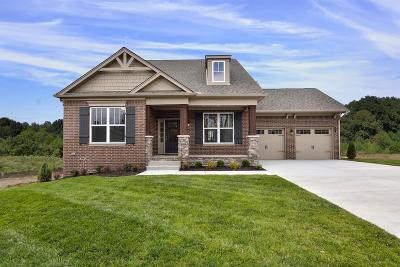 Single Family Home For Sale: 259 Caroline Way, L150