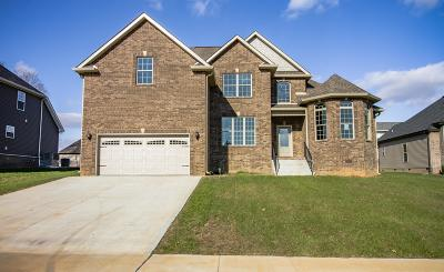 Clarksville Single Family Home For Sale: 1029 Chagford Dr