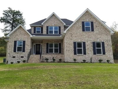 Woodbury Single Family Home For Sale: 57 Hillside Cove Dr