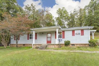 Kingston Springs Single Family Home For Sale: 1008 Old Butterworth Rd
