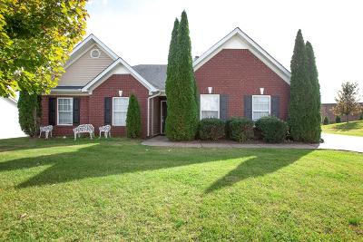 Spring Hill Single Family Home For Sale: 3004 Ping Court