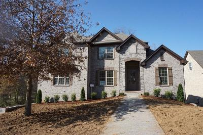 Hendersonville Single Family Home For Sale: 1005 Tower Hill Ln Lot 1