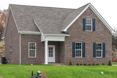 Nashville Single Family Home For Sale: 1013 Trevino Pl