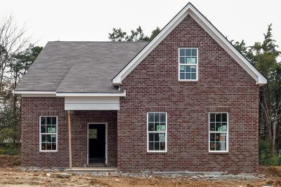 Nashville Single Family Home For Sale: 1032 Trevino Pl