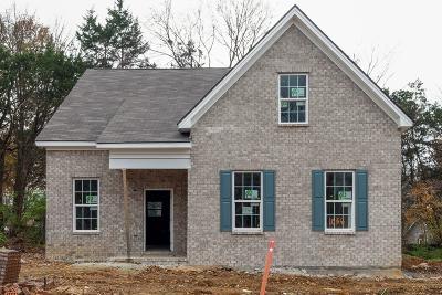 Nashville Single Family Home For Sale: 1036 Trevino Pl