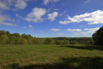 Cumberland Furnace Residential Lots & Land For Sale: Slayden-Marion Rd