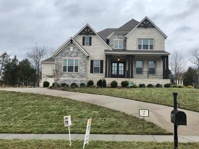 Nolensville Single Family Home For Sale: 120 Asher Downs Circle #5