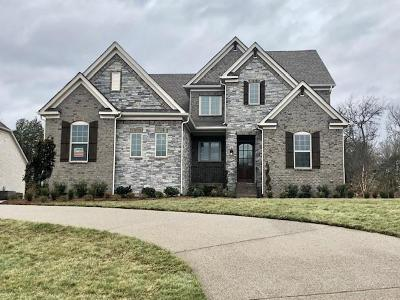 Nolensville Single Family Home For Sale: 116 Asher Downs Circle #4