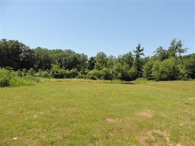 Adams, Clarksville, Springfield, Dover Residential Lots & Land For Sale: 3160 Austin Brian Ct.