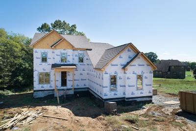 Hendersonville Single Family Home For Sale: 104 Whistler Way Lot 224