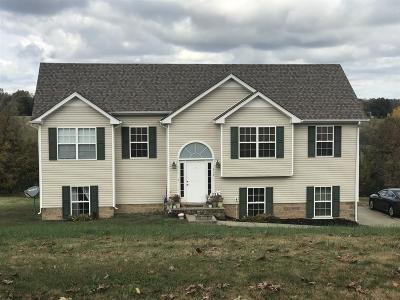 Clarksville Single Family Home For Sale: 721 Seven Mile Ferry Rd