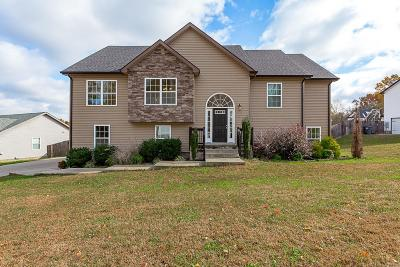Clarksville Single Family Home For Sale: 1193 Morstead Dr