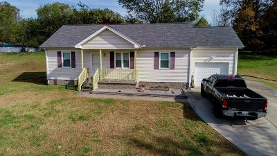 Chapmansboro Single Family Home For Sale: 1920 Old Clarksville Pike