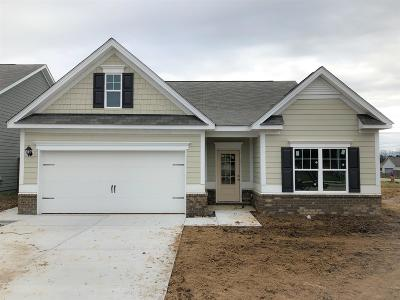 Spring Hill Single Family Home For Sale: 38 Carnation Drive