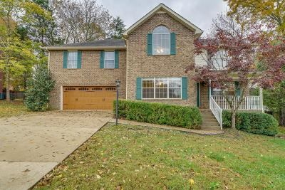 Smyrna Single Family Home For Sale: 409 Mountain View Ct