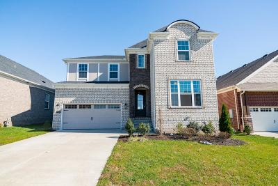 Single Family Home For Sale: 1010 Syler Dr