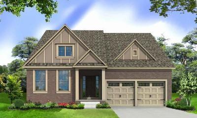 Nolensville Single Family Home For Sale: 204 Robin Lane- Lot 204