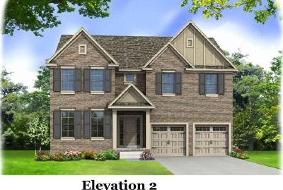 Nolensville Single Family Home For Sale: 205 Robin Lane-Lot 205