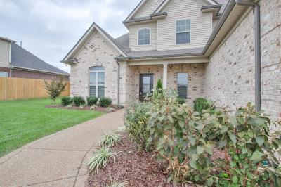 Lascassas Single Family Home For Sale: 1019 Millstone Creek Rd