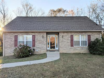 Pegram Single Family Home For Sale: 9104 Old Charlotte Pike