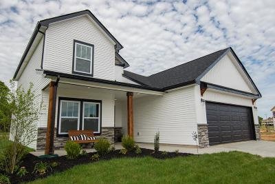 Clarksville Single Family Home For Sale: 1 Reserve At Sango Mills