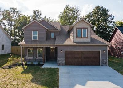 Clarksville Single Family Home For Sale: 83 Reserve At Sango Mills