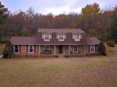 Hendersonville Single Family Home For Sale: 110 Stuart Dr
