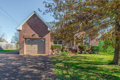 Hendersonville Single Family Home For Sale: 125 Candle Wood Dr