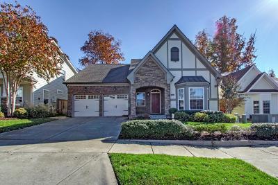 Mount Juliet Single Family Home For Sale: 3057 Kirkland Circle