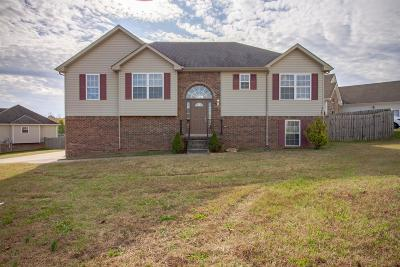 Clarksville Single Family Home For Sale: 1850 Twin Rivers Rd