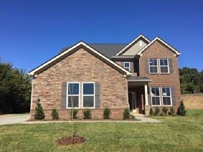 Nolensville Single Family Home For Sale: 699 Harpers Mill Rd.