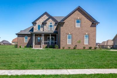 Clarksville Single Family Home For Sale: 53 Hartley Hills