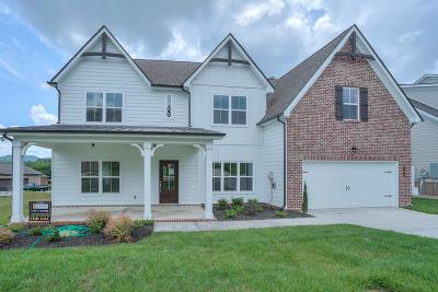 Nolensville Single Family Home For Sale: 5105 Falling Water Rd