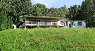 Stewart Single Family Home For Sale: 323 Joiner Hollow Rd